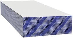 """Georgia-Pacific® DensArmor Plus® 5/8"""" x 4' x 10' Interior Panel"""