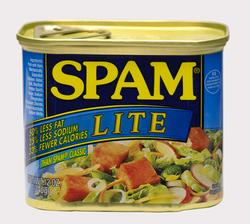 SPAM Lite Luncheon Meat - 12 oz