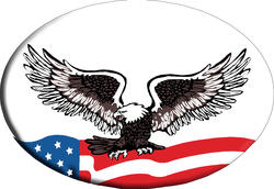 Knockout Bald Eagle on US Flag Hitch Cover