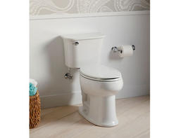 Sterling Stinson® Toilet with Pro Force Flush and Elongated Bowl