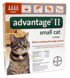Bayer Advantage® II for Cats 5 - 9 lb. - 4 pk.