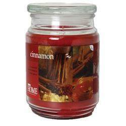 Empire Home® Cinnamon Apothecary Candle - 20 oz.