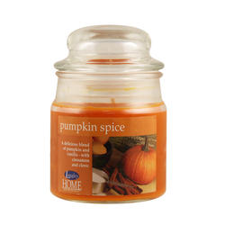 Langley® Home Pumpkin Spice Apothecary Candle - 3 oz.