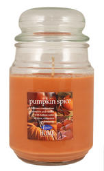 Langley® Home Pumpkin Spice Candle - 18 oz.