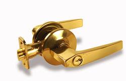 Atlas Polished Brass Straight Entry Lever