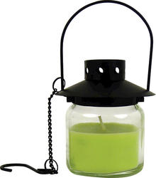 Hanging Citronella Jar Candle (Assorted Styles)