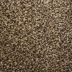 Looptex Mills Irreplaceable Plush Carpet 12 ft wide