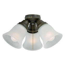 """Porter 3-Light 14"""" Oil Rubbed Bronze Fan Light"""