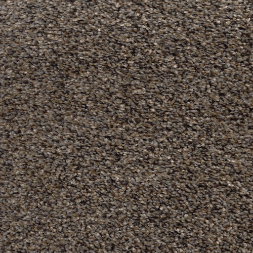 Marquis Industries Star Gazer Frieze Carpet 12 Ft Wide at ...