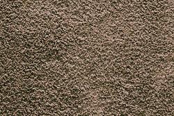 Marquis Industries Reliance Frieze Carpet 12 Ft Wide