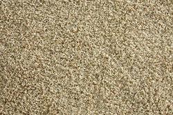 Marquis Industries Coastal Elegance Plush Carpet 12 Ft Wide