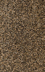 Marquis Industries Big Sky Frieze Carpet 12 Ft Wide