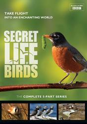Secret Life of Birds: The Complete 5-Part Series DVD