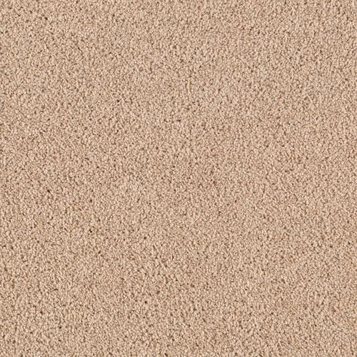 Mohawk Bay Brook Manor Plush Carpet 12 Ft Wide At Menards 174