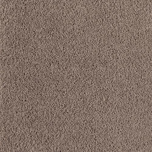 Mohawk Winning Touch Plush Carpet 15 Ft Wide At Menards 174