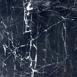 "Polished Marble Floor or Wall Tile 12"" x 12"""