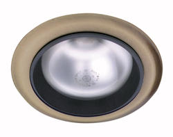 "5"" Recessed Light (Indoor/Outdoor) Satin Chrome"