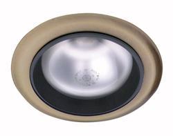 "5"" Recessed Light (Indoor/Outdoor) Satin Chrome"