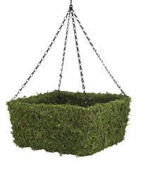 """13"""" Square Moss Hanging Basket"""