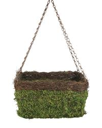 "13"" Square Moss Hanging Basket with Wicker"