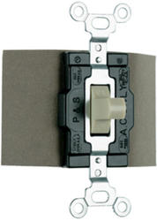 Legrand 15-Amp Double-Pole Double-Throw Maintained Contact Manual Controller