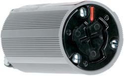 Legrand Turnlok® Black 20-Amp 125-Volt HG Power-Interrupting Connector