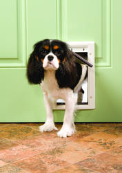 "PetSafe 5.12"" x 8.25"" Small Premium White Plastic Pet Door"