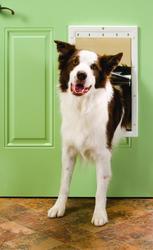 """PetSafe 10.12"""" x 16.25"""" Large Premium White Plastic Pet Door"""