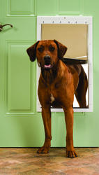 "PetSafe 13.75"" x 23.75"" Extra Large Premium White Plastic Pet Door"