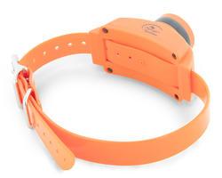 SportDOG UplandHunter Accessory Dog Collar Beeper