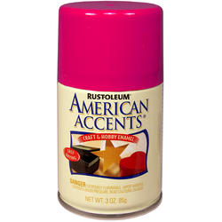 Rust-Oleum® American Accents Blossom Pink Craft & Hobby Enamel Spray - 3 oz