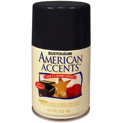 Rust-Oleum® American Accents Gloss Black Craft & Hobby Enamel Spray - 3 oz