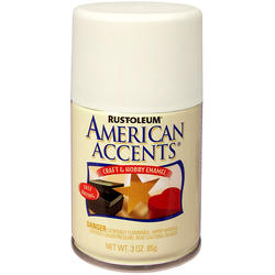 Rust-Oleum® American Accents Matte Clear Craft & Hobby Enamel Spray - 3 oz