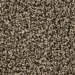 Shaw Color Debut Frieze Carpet 12 Ft Wide