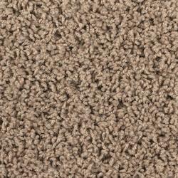Shaw Vision Frieze Carpet 12 Ft Wide