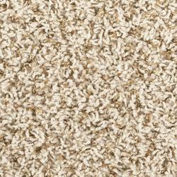 Shaw Jules Frieze Carpet 12 Ft Wide