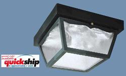 "2-Light 10.25"" Black Hi-Impact Polypropylene Ceiling Light"