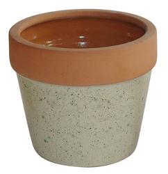 "Enchanted Garden™ 5"" Dotty Ivory Earthenware Lucca Red Clay Planter"