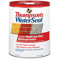 Thompsons Water Seal Clear Multi-Surface Waterproofer