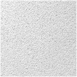 USG Saville Row™ 2' x 2' Acoustical Lay-In Ceiling Tile Panel