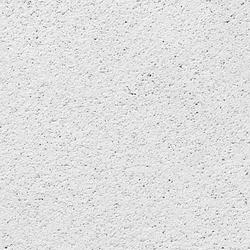 USG Arctic™ 2' x 2' Acoustical Lay-In Ceiling Tile Panel