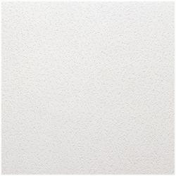 USG Tabaret ClimaPlus 2' x 4' Perforated Acoustical Lay-In Ceiling Tile Panel