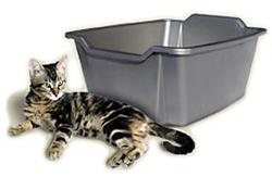 Van Ness™ Large Cat Litter Pan
