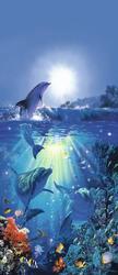 Dolphin in the Sun