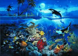 Under Sea Paradise