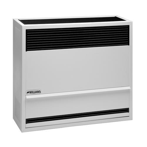 30,000 BTU Direct Vent Heater, Natural Gas At Menards®