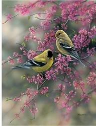 """Goldfinch Pair 11"""" x 15"""" Flag"""