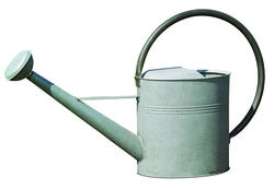 Enchanted Garden™ 3.2-Gallon Vintage Watering Can