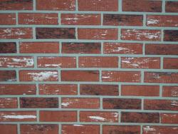Z-Brick Brick Veneer - 3.5 Sq. Ft.
