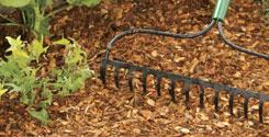 Applying Winter Mulch In The Fall
